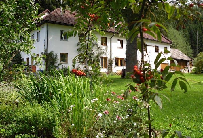 Musik-Urlaub - Herzogreith - Casa