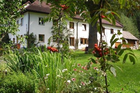 Musik-Urlaub - Herzogreith - บ้าน