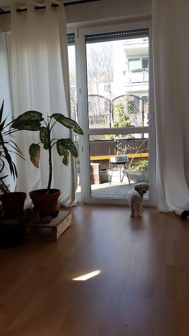 70 qm terasse und barrierefrei wohnungen zur miete in leipzig sachsen deutschland. Black Bedroom Furniture Sets. Home Design Ideas