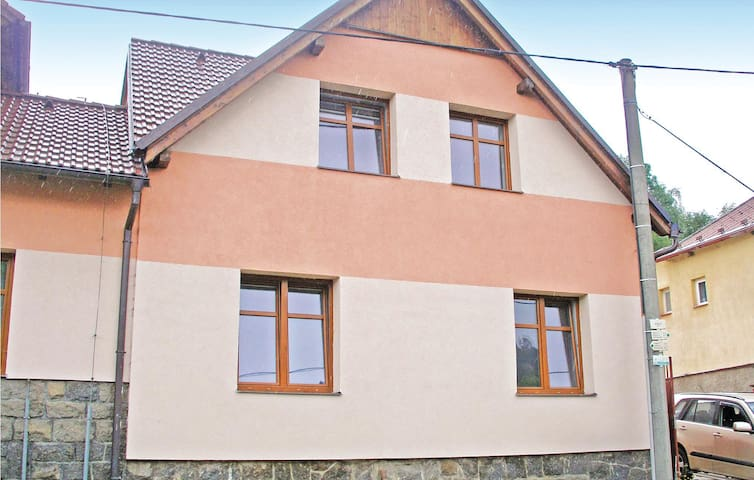 Holiday cottage with 4 bedrooms on 111 m² in Susice