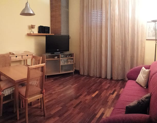 cosy and comfortable apartment - Brugherio - Appartement