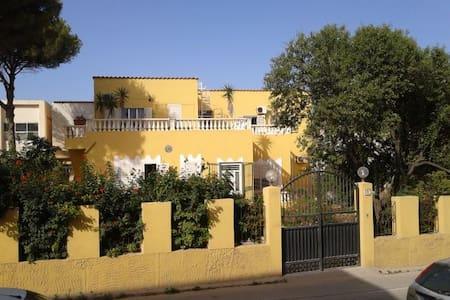 """Villa Anastasia Apt""""blue plumbago"""" - Lampedusa"""