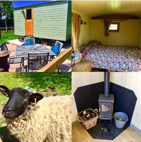Shepherds Hut - (Pippin) Glamping sleeps 2