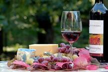 Weinregion Kamptal
