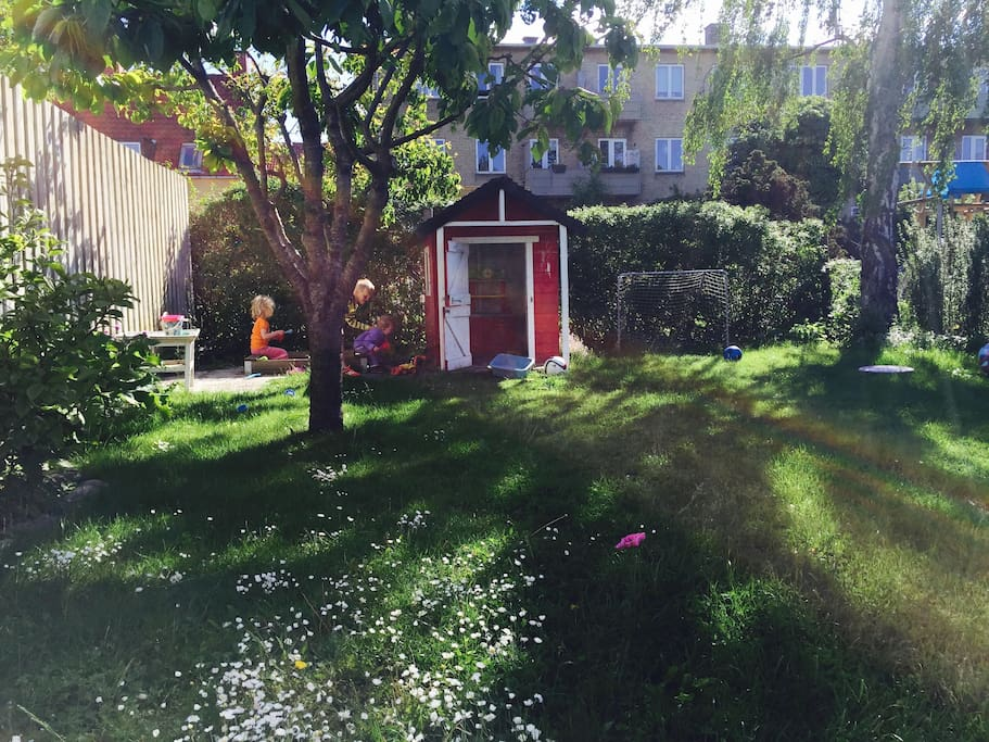 The back yard contains sand box, play house, soccer goals and trampoline