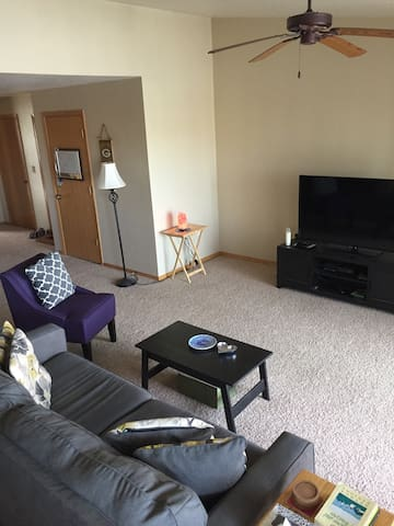 Quiet, spacious, comfortable one bedroom - De Pere - Appartamento
