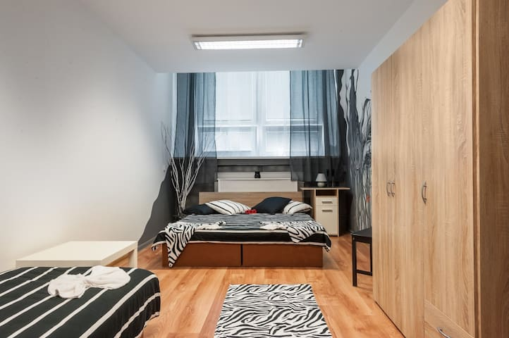 cozy, bright a and clean room for 3 - Bratislava - Rumah