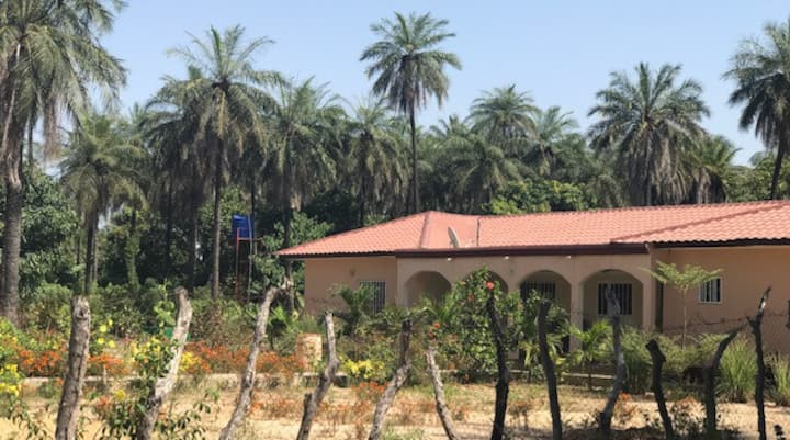 THE PALM GROVE HOUSE. GUEST HOUSE.