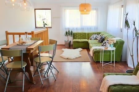 AmurguluiBnB | Home w/ Amazing Mountain View