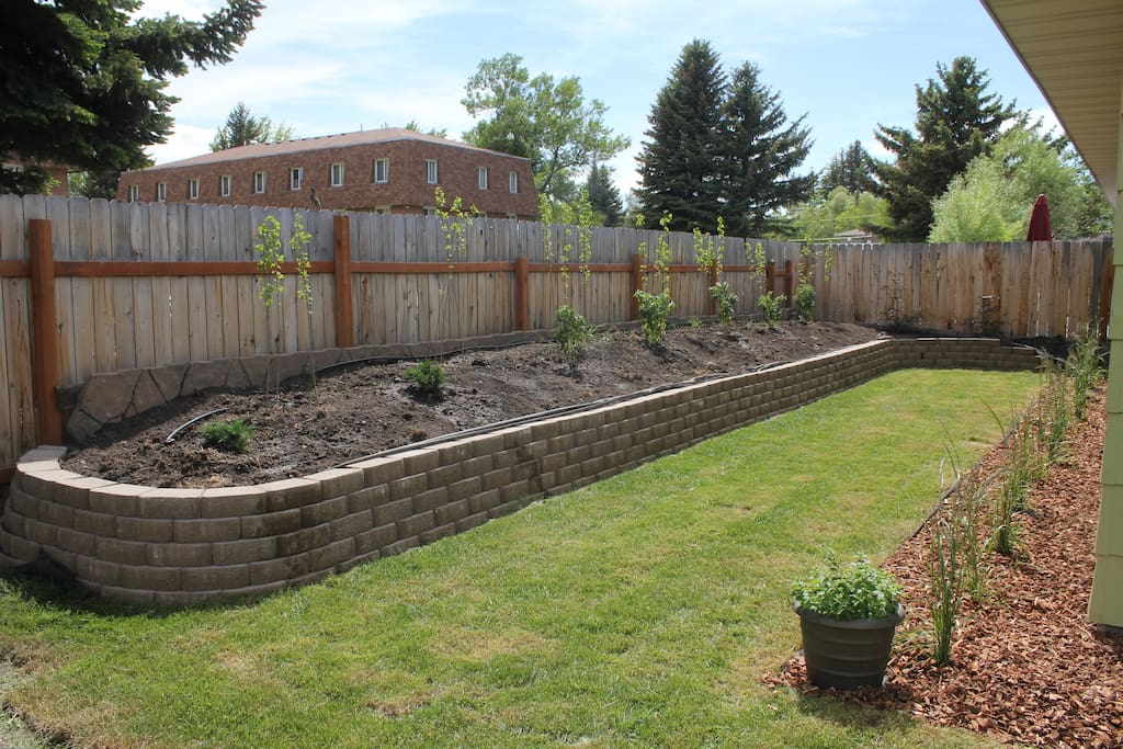 Large raised bed in the back with new landscaping.