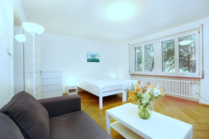 City center / University - 1 BR, 40 sqm