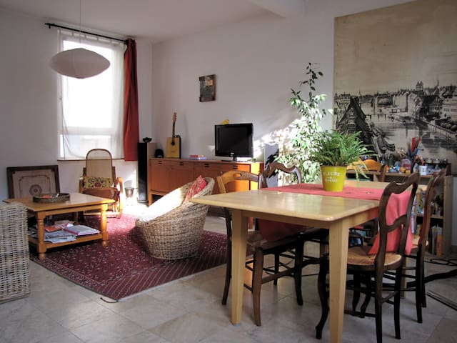 Bright and spacious house, with courtyard - Strasbourg - House
