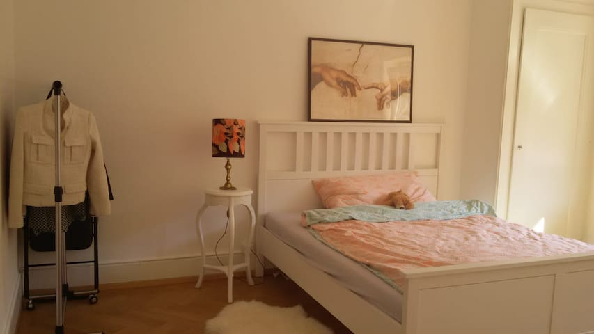 Spacious furnished room in the heart of Lausanne