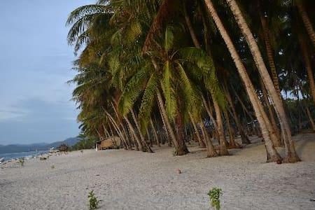 Beach, Explore island, snorkeling, shipwreck