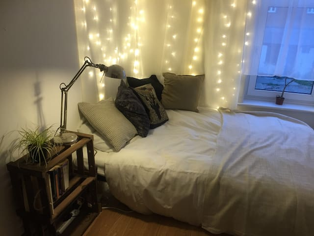 Cosy room short walk from city centre/university