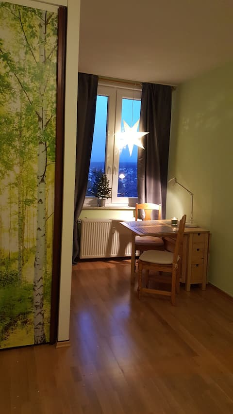 Kleines Braunlage Apartment mit Aussicht