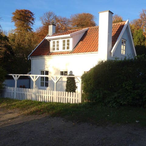 Cozy family house in the wood - Værløse - House