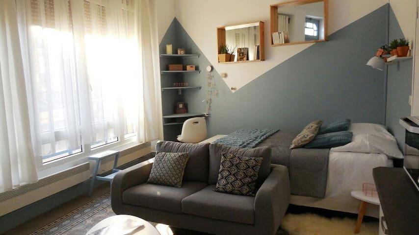 Studio de caractère coeur de vichy - Vichy - Apartment