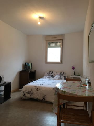 PRETTY STUDIO 200M TO THE STATION AND AT THE FOOT - Le Mans - Appartement