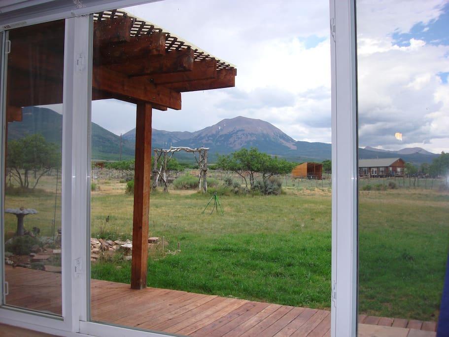 View from Garden room window