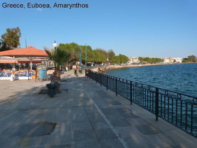 Apt close to the beach Amarynthos Evia