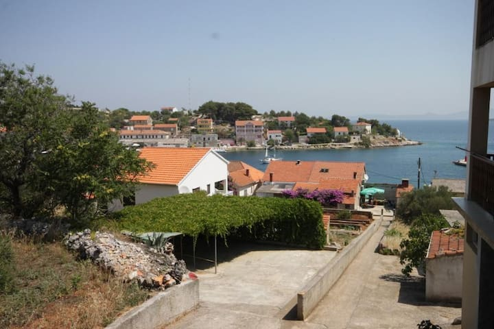 One bedroom apartment with terrace and sea view Sali (Dugi otok) (A-454-d)