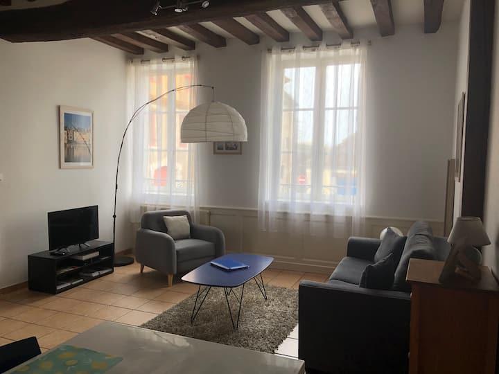 Auxerre Beautiful Apartment Historical Center