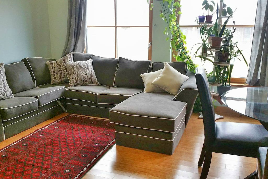 Cozy sectional with lots of daylighting
