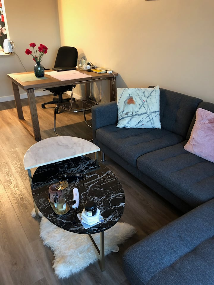 Emeryville Home with over Bay view for Rent