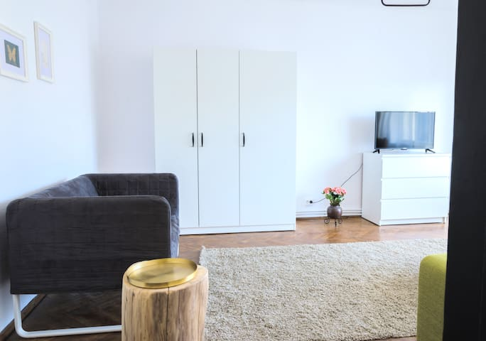 Newly renovated rustic apartment