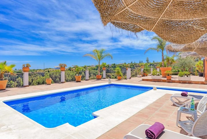 One bedroom villa surrounded by olive groves