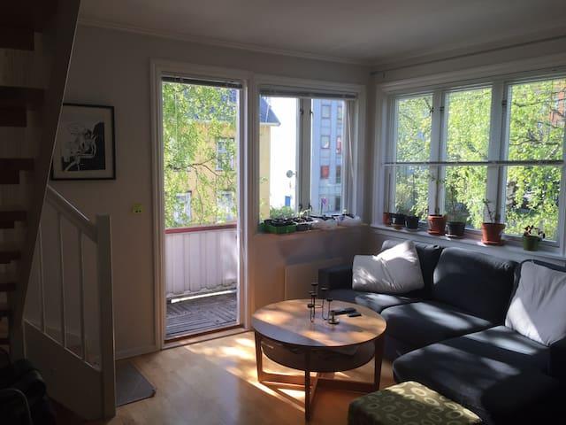 Central apartement, NTNU Campus - Trondheim - Wohnung