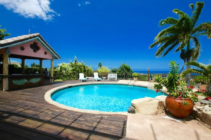 Villa Daveen, 4 bdrm with pool, private & central
