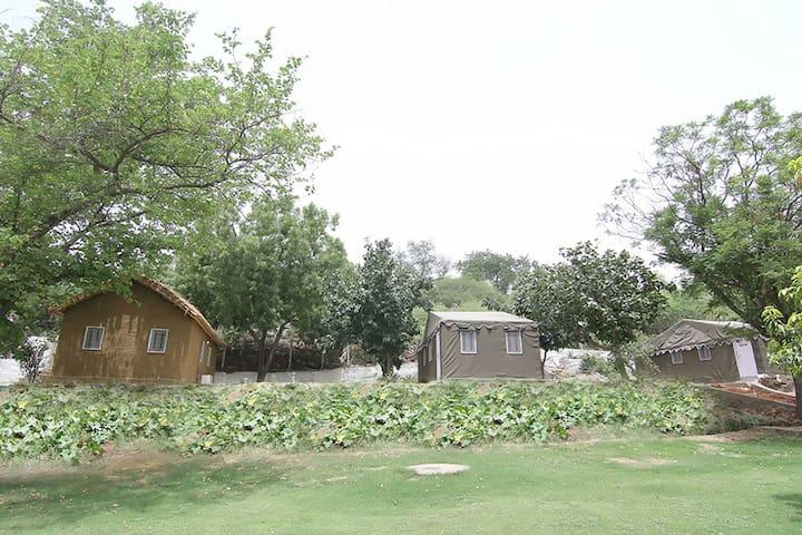 2.5 acres Naturopathy Green Spa Resort in Delhi