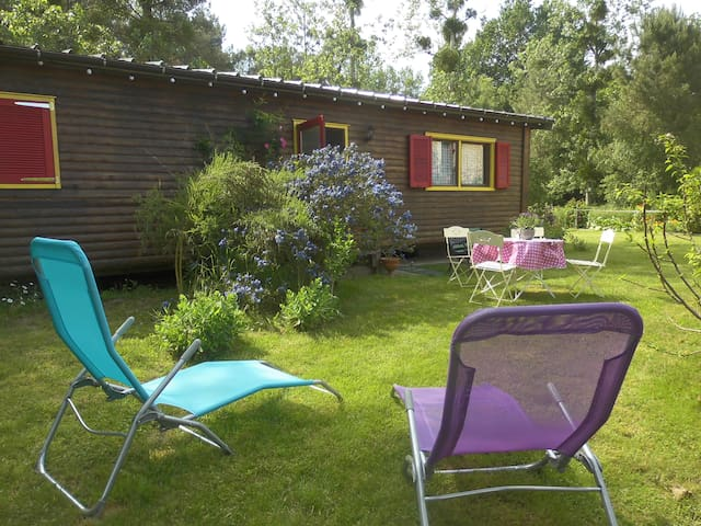 bungalow bois en lisière de forêt - Montigné-lès-Rairies - บังกะโล