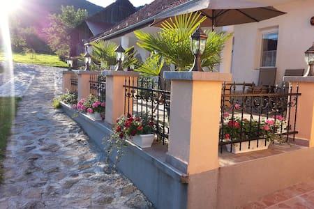 Pusztafalu-Enjoy the sauna, lake, wine & gym park