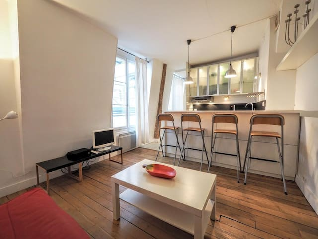 Charming 2 room flat is in the heart of Le Marais