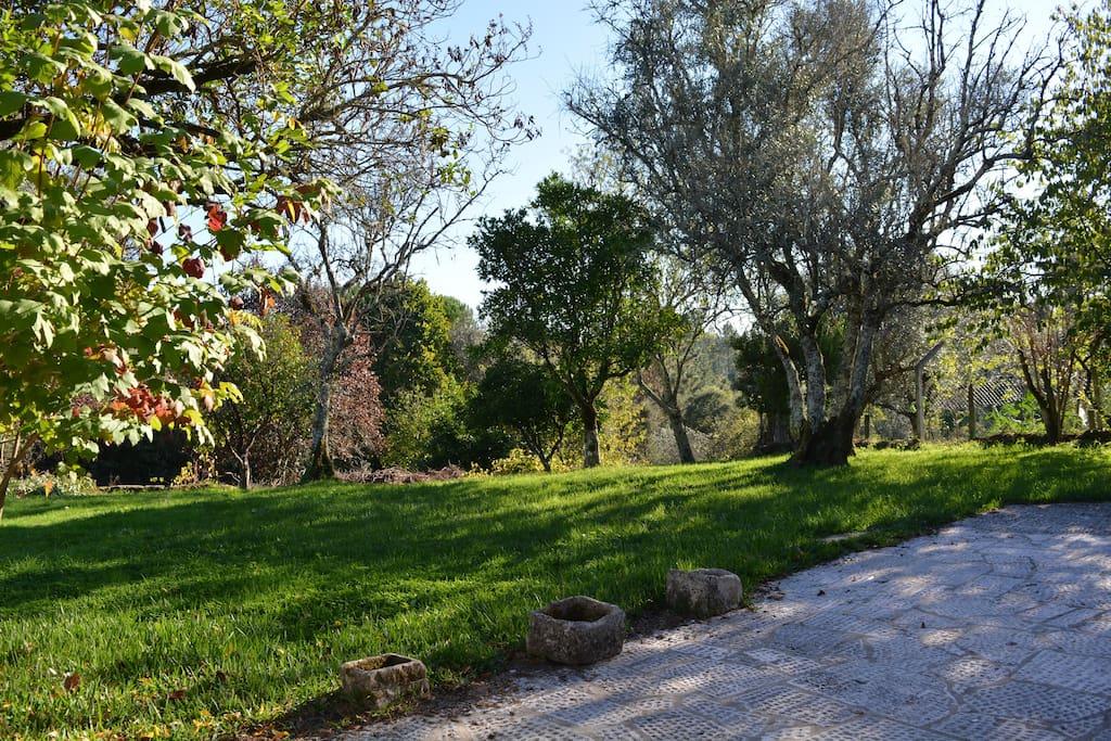 Pavimento exterior junto ao jardim.