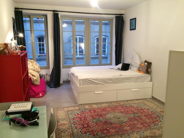 Small but practical and cute ! - Fribourg - Flat