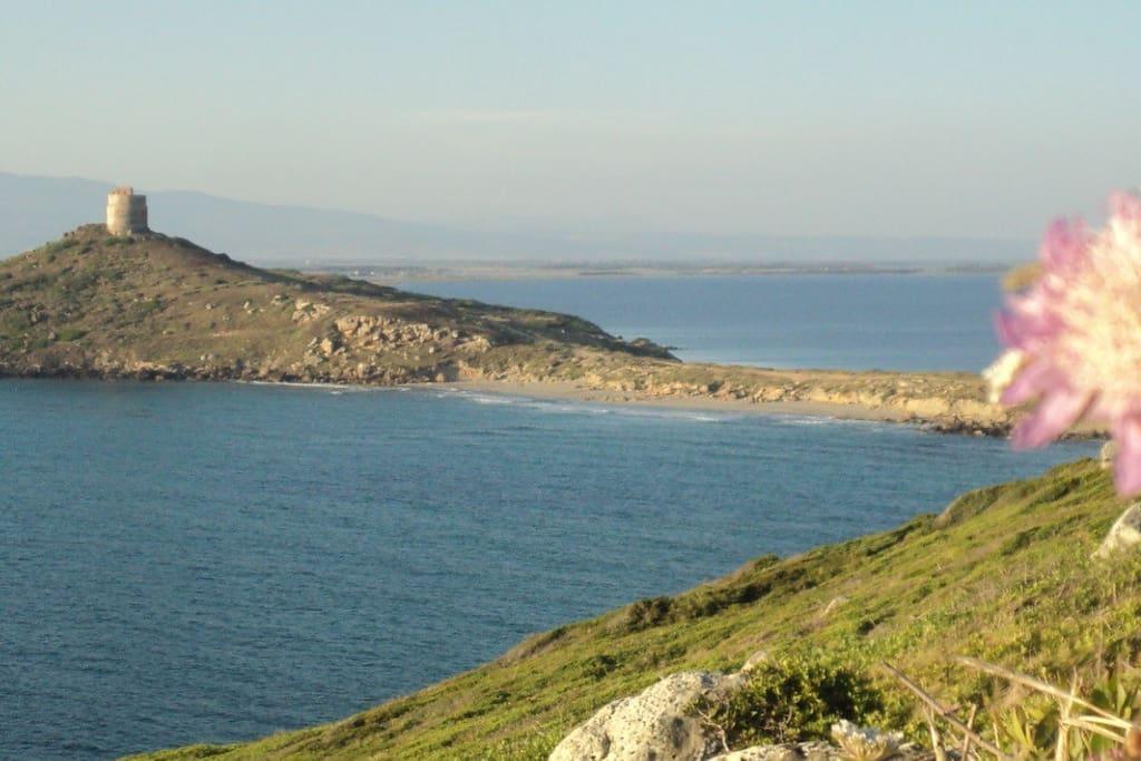 Capo San Marco a 10 km