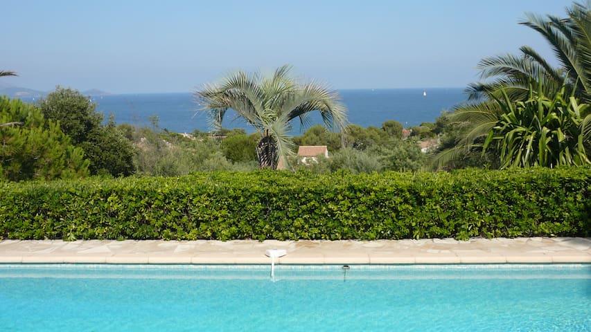 vue  piscine depuis la terrasse du RDC