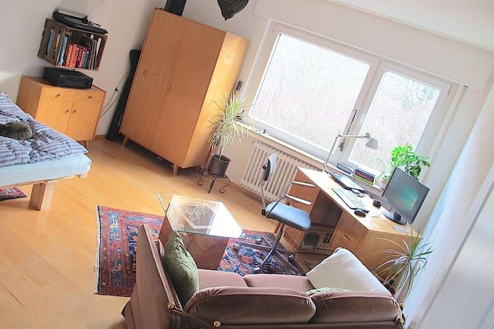 geräumiges Zimmer im schönen Stuttgarter Osten