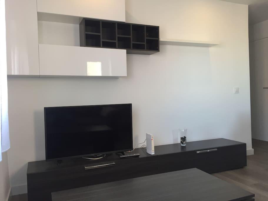 Mueble con TV 40'