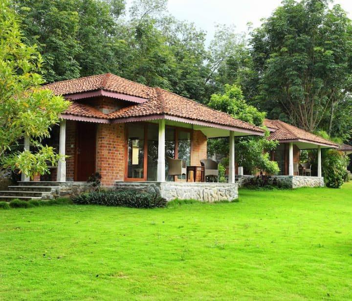 Anantya Resort - Chakra Cottage