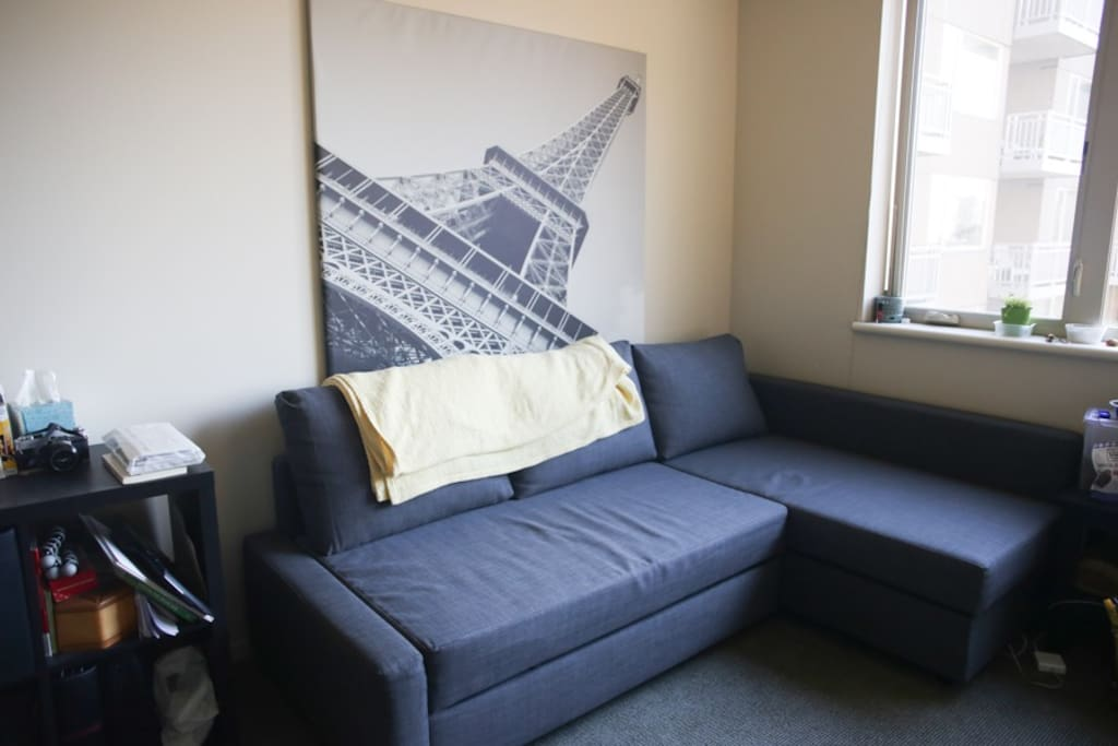 IKEA couch in the living area -- quite comfy!