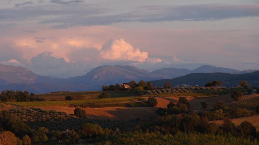 A paradise in Umbria - Villa Caprifoglio
