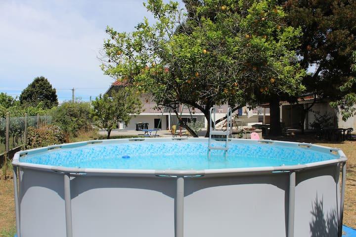 Fino Seixo, spacious apartment with a large garden