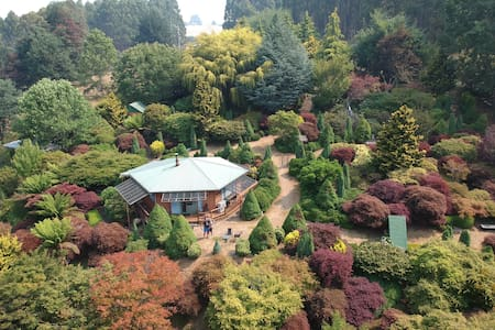 Don Dossers Magnificent Garden Stay