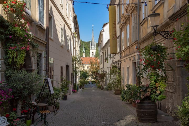 4 minute walk away is Križevniška street, proclaimed as Ljubljana's most beautiful street. It's also a home to Mini Theater and used to be to a few important Slovenian poets and directors.