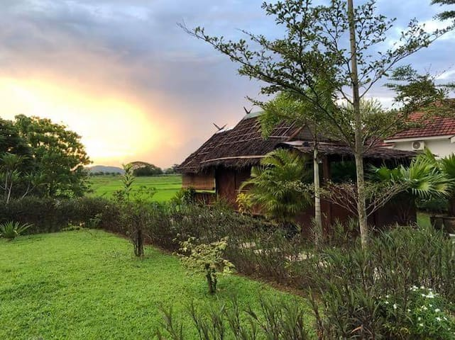 ✪ Sunset Lodge (Paddy View) ✪ @Bambü Getaway